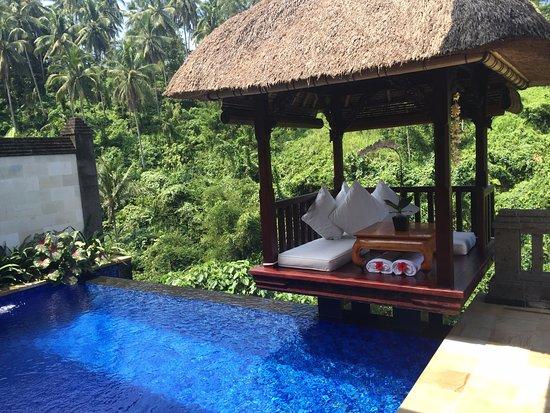 Deluxe Terrace Villa Private Pool Picture Of Viceroy Bali Ubud Tripadvisor