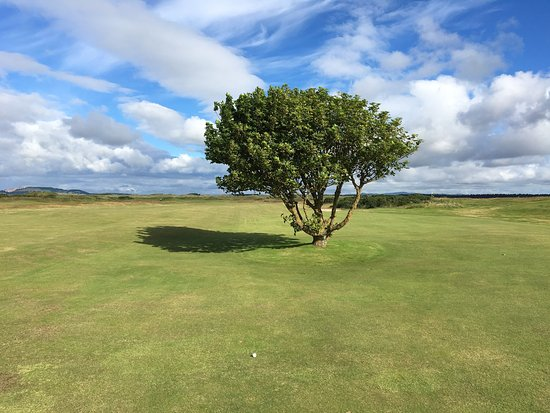 Jubilee Course, St Andrews Links: photo9.jpg
