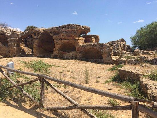 Valley of the Temples (Valle dei Templi): Bellissima esperienza. Siamo arrivati in alto in navetta (3€) e poi siamo scesi a piedi godendoc