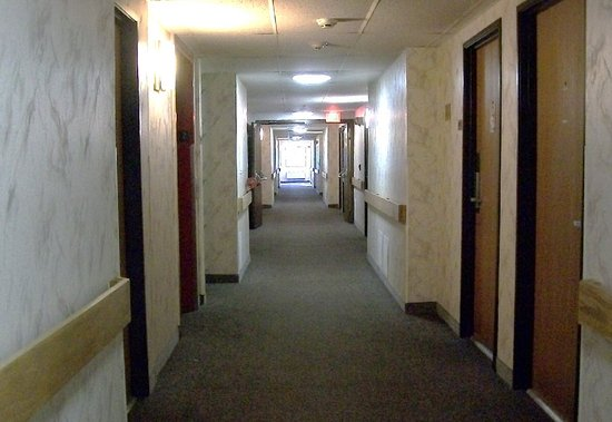 Elk Grove Village, IL: halls, clean and neat. usually very quiet