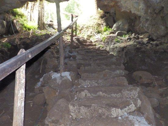 سانتا كروز, الإكوادور: Ingreso al túnel