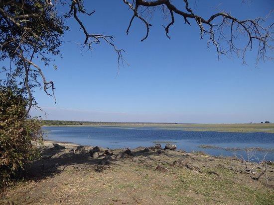 Chobe National Park, Botswana: Coffee break by the Chobe River