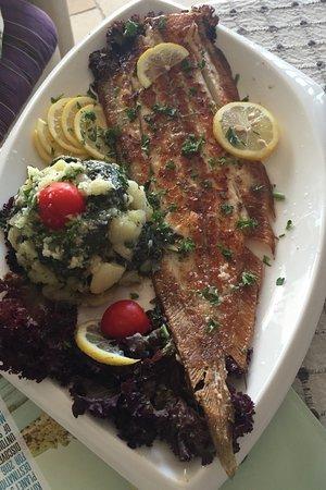 Tivat, Montenegro: Domestic fish - mediteran recept