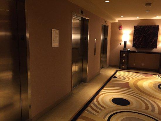 MotorCity Casino Hotel: photo7.jpg