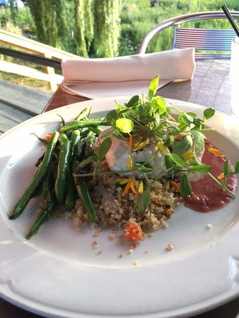 Hector, NY: Halibut with quinoa and pea shoots