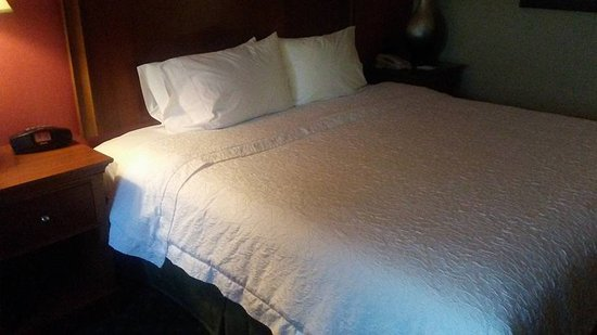 Hampton Inn & Suites Albany Airport: Cean - room