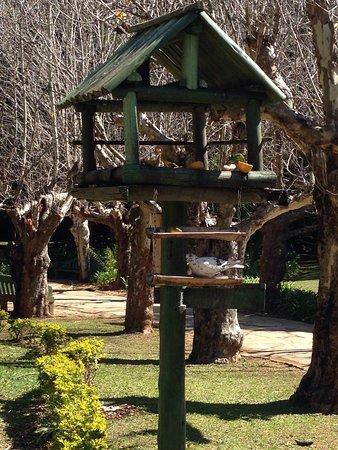 Parque das Águas: photo2.jpg