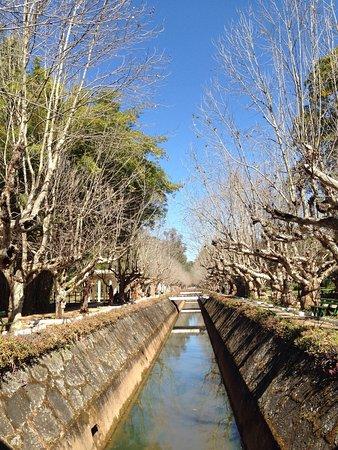 Parque das Águas: photo3.jpg
