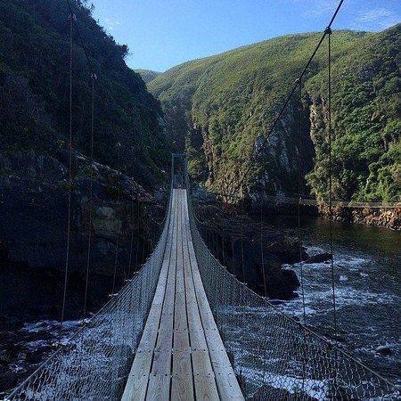 George, Zuid-Afrika: Tsitsikamma National Park suspension bridge