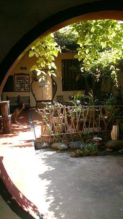 Wuyi Shan, Cina: Hostel courtyard