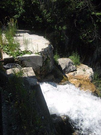 Walters Falls, Canada : Falls