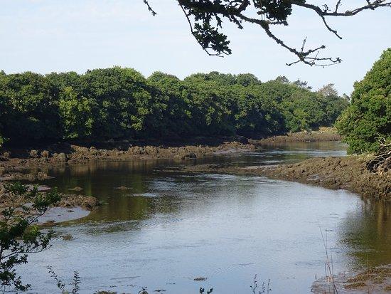 Auberge de Bel Air : The estuary/river seen from the garden