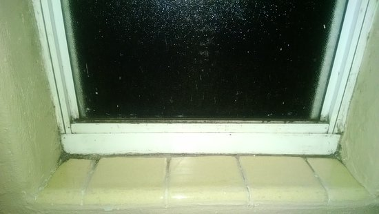 Econo Lodge Oceanfront : Mold in window