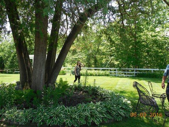 Galena, IL: Belvedere garden area behind mansion