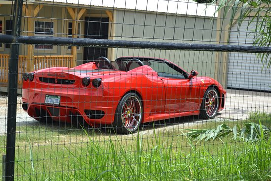Wynnewood, OK: Red Ferrari