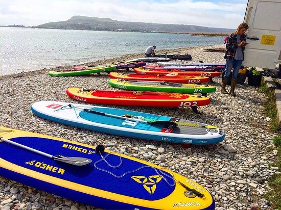 Lyme Regis, UK : Summer 2016