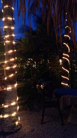 Mayan Bistro: Beautiful evening lights on the patio