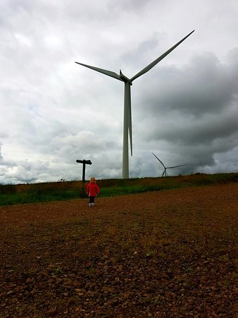 Eaglesham, UK: Windy day out