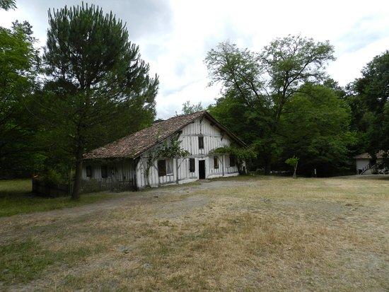 Sabres, France: maison d'époque