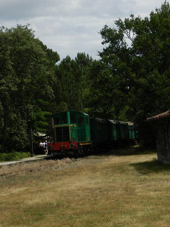 Sabres, France: train