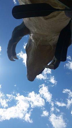 World's Largest Dinosaur: so big