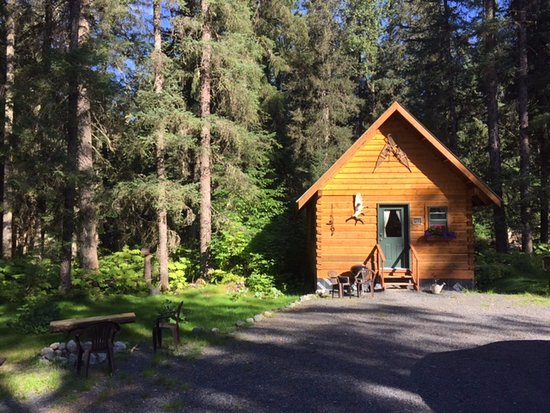 Bear Creek Cabins: The cutest cabin that I ever did see.