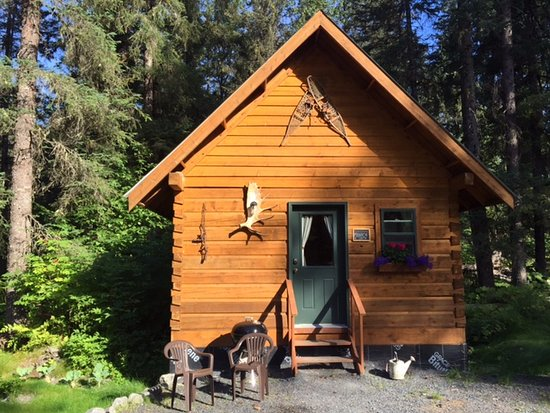 Bear Creek Cabins : Looks tiny but there was plenty of room for 4 in here!