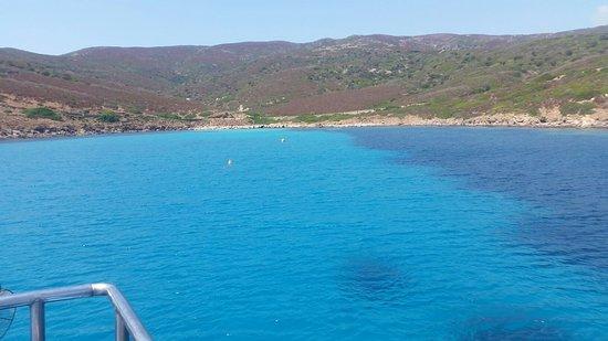 Asinara, Italy: 20160726_122658(0)_large.jpg