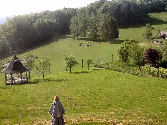 Auby-sur-Semois, Bélgica: view
