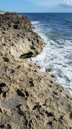 Hobe Sound, Флорида: the rocks suddenly jut out from the sandy beach