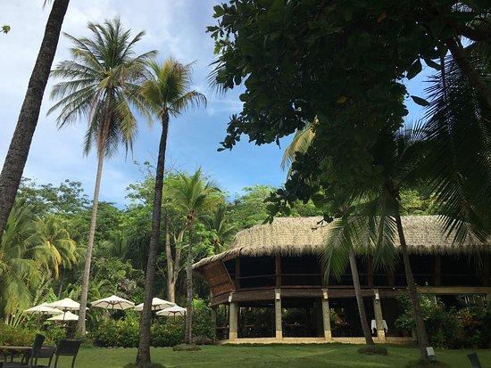 Ylang Ylang Beach Resort: photo0.jpg