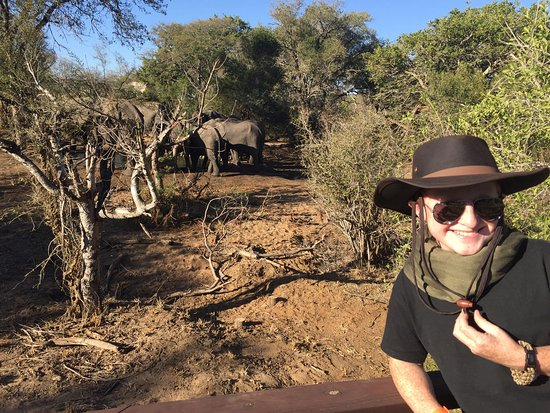 Manyeleti Game Reserve, Sudáfrica: The highlight of our African trip. The outside candlelight Boma dinners are Thursday nights. Jus