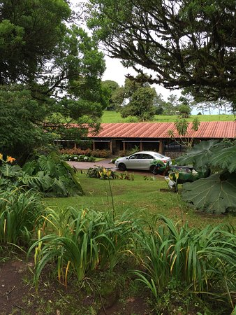 Poas Volcano Lodge: View of cabin