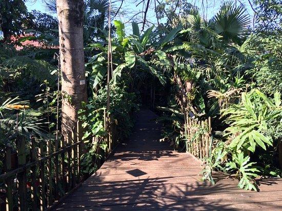 Secret Garden Iguazu B&B: el caminito hacia el rincon para desayunar