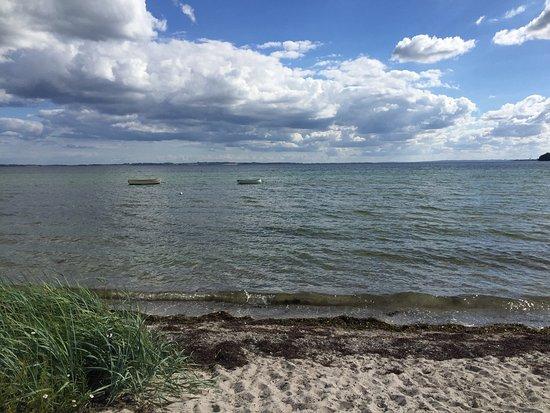 Kalovig StrandGaard Camping Djursland: Flot strand tæt på Campingpladsen