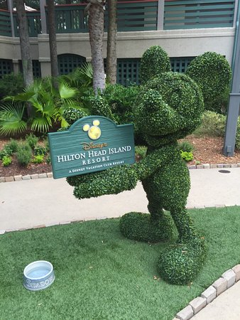 Disney's Hilton Head Island Resort รูปภาพ