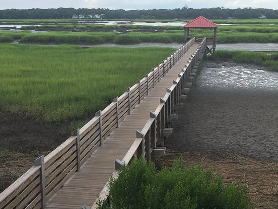 Disney's Hilton Head Island Resort: Dock, where when the tide is in you can fish off of.