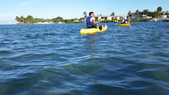 Jupiter, FL: Guide on paddle board and sit on top kayaks
