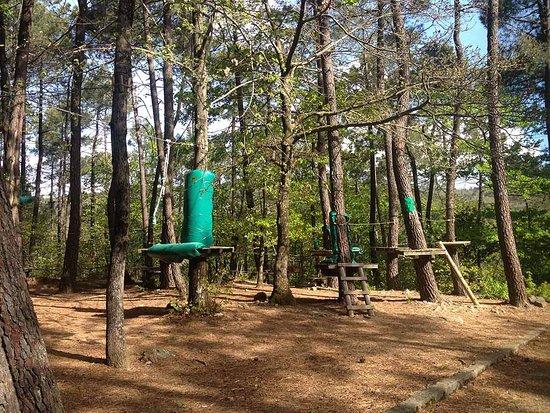 Ardeche, Γαλλία: Indian Forest Ardèche
