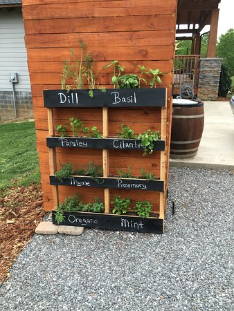 Morganton, Carolina del Nord: Our herb garden