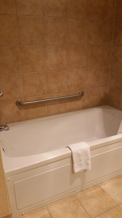 The Seasons Lodge: Deluxe Room Bathtub