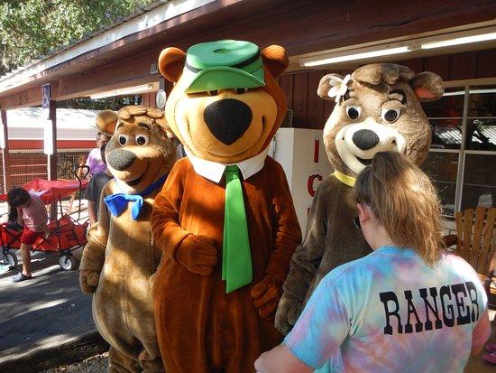 Canyon Lake, เท็กซัส: All three bears