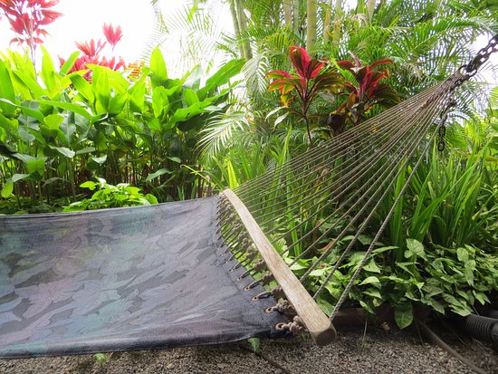 Maui Tradewinds: Private Hammock for two - lovely way to spend time