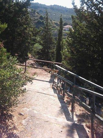 Little walk up the hill