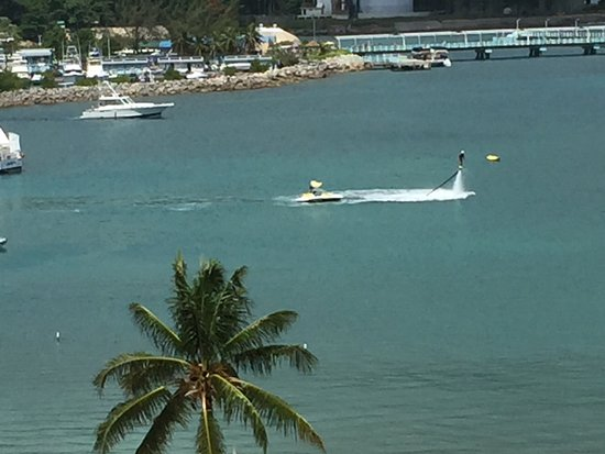 Jamaica Xplored: photo0.jpg