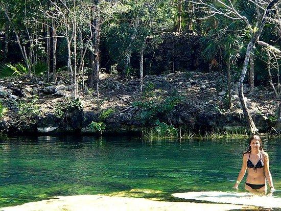 Cenote jardin del eden acuaticaribe mexico picture of for Jardin del eden