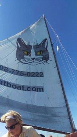 Catboat Rides: catboat