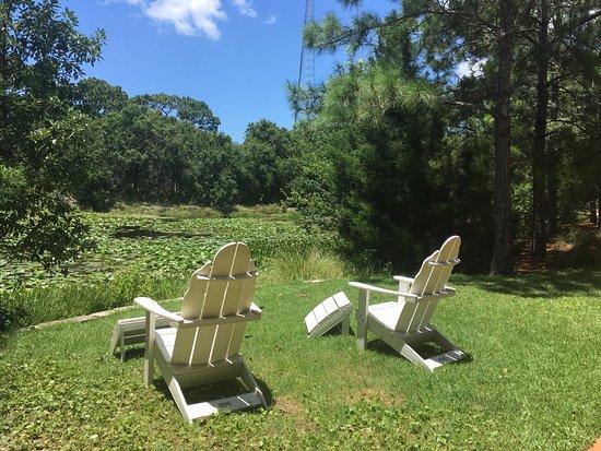 Florida Botanical Gardens - Picture of Florida Botanical Gardens ...
