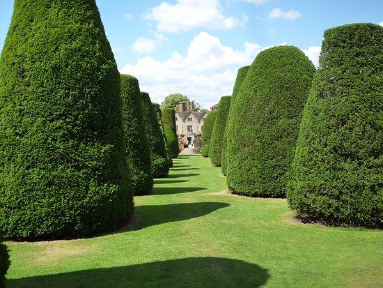 Lapworth, UK: The topiary
