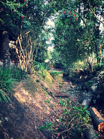 Hillcrest, Afrika Selatan: A river ran through it. Once upon a time...